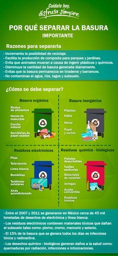 ¿Tienes la costumbre de separar la basura? Aquí te decimos cómo hacerlo correctamente.