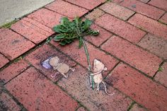 David Zinn chalk art 2017