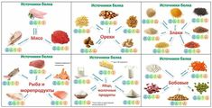 Картинки по запросу Самые полезные источники белка