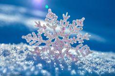 scaricare gli sfondi fiocco di neve, neve, vkrapinki Sfondi gratis per la risoluzione del desktop 7500x4967 — immagine №478860