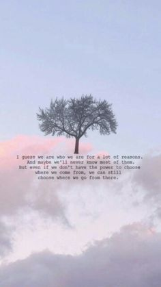 ~ The Perks Of Being A Wallflower