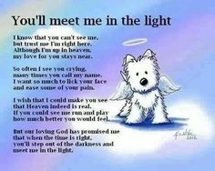 You'll meet me in the light . . . a wonderful pet sympathy poem.
