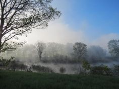 A misty morning in May is captured at this wetland in Winchester, New Hampshire.