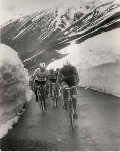 Bitossi y Vittorio Adorni en1967 Giro d'Italia, etapa 20