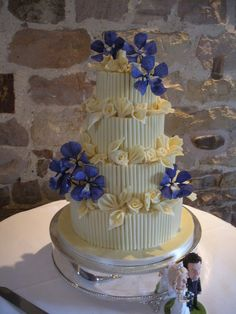 Chocolate Vanda Orchid by That Special Cake by Angela, via Flickr