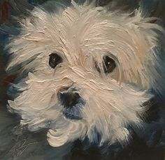 "Daily Paintworks - ""Small white puppy face"" - Original Fine Art for Sale - © Annette Balesteri"