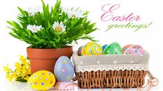 #95th - HAPPY EASTER GREETING http://ift.tt/2p8H1bh