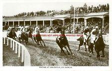 Dublin (North) - Dublin North - Baldoyle - Racing at Baldoyle, Co. Dublin, Ireland Homes, Emerald Isle, Vintage Photographs, Old Photos, Irish, Racing, Horses, History
