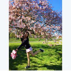 GRAFEA Spring Awakening, Cherry Blossom, Blog, Blogging, Cherry Blossoms