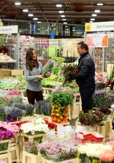Pippa Middleton at New Covent Garden Flower Market - Telegraph 28/09/13