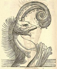Ulissi Aldrovandi (Aldrovandus) (1522-1605)  'Monstrorum Historia' was first published in ~1642
