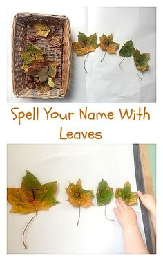 Spell your name with leaves fun autumn themed preschool activity for letter and name recognition.