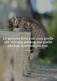 Life Is Beautiful, Love Of My Life, Words Quotes, Life Quotes, Cogito Ergo Sum, Italian Quotes, Smart Quotes, Quotes About Everything, Magic Words