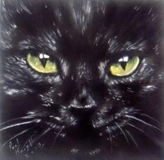 The Black Cat by ~astarvinartist on deviantART