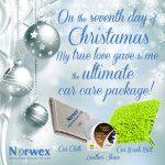 The 12 Days of Christmas, Norwex Style - Norwex R.A.C.E.Norwex R.A.C.E.