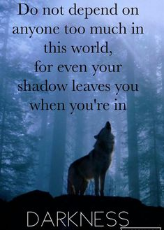 Wolf quotes and saying. The Wolf is a symbol of guardianship, instinct, loyalty, and spirit. The Wolf represents strong connection with instincts and intuition, high intelligence and communication – qualities we all should aspire to. Wisdom Quotes, True Quotes, Great Quotes, Words Quotes, Quotes To Live By, Motivational Quotes, Inspirational Quotes, Sayings, Loner Quotes