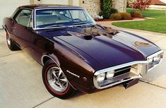 Muscle Car Dreaming: Photo
