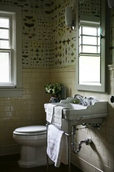 The Steampunk Home: More Bathrooms from the Cabinet of Curiosities