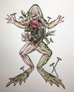 Biology - 8 x 10 Print of original watercolor tattoo style frog Biology Tattoo, Biology Drawing, Frog Drawing, Biology Art, Nature Tattoos, Body Art Tattoos, Science Illustration, Watercolor Illustration, Watercolor Tattoo