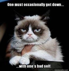 98dbc02aad2759ff15411a58200bb4aa grumpy cat meme grumpy kitty just no grumpy cat, grumpy cat meme and cat,Get Down Cat Meme