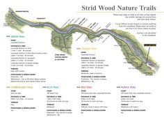 Strid Wood Nature Trails