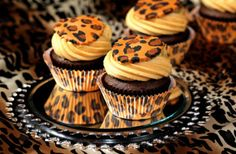 amazing, animal, cool, cupcake