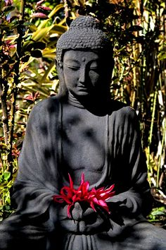 Buddha with red flower