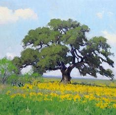 Oak Tree Landscape by Noe Perez ~ Oil on Canvas Tree Watercolor Painting, Gouache Painting, Watercolor Landscape, Landscape Art, Landscape Paintings, Tree Paintings, Watercolour, Impressionist Landscape, Impressionism Art
