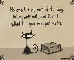 No One Let Me Out Of The Bag. I Let Myself Out, And Then I Killed The Guy Who Put Me In. (Brainless Tales Cat)