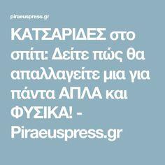 ΚΑΤΣΑΡΙΔΕΣ στο σπίτι: Δείτε πώς θα απαλλαγείτε μια για πάντα ΑΠΛΑ και ΦΥΣΙΚΑ! - Piraeuspress.gr