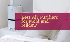 Check out these 5 best air purifier for mold which not only reduce and minimize mold and mildew but can also combat dust mites, bacteria, and pollen etc.