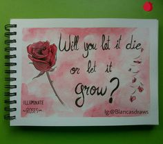 Will you let it die or let it grow? (Shawn Mendes - Roses lyrics)