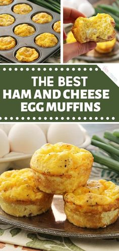 Start the day with The Best Ham & Cheese Egg Muffins! An Easter recipe for a crowd that makes light and fluffy muffins loaded with ham and cheese. A healthy option packed with protein and about 100 calories! Try this food idea on Easter morning! Easter Recipes For A Crowd, Easy Brunch Recipes, Healthy Brunch, Ham Recipes, Appetizer Recipes, Breakfast Recipes, Cooking Recipes, Breakfast Ideas, Easter