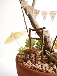 Fairy garden. A great idea drink umbrella for indoor garden.