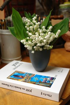 Du Muguet pour la JOIF ! Un livre écrit par une femme pour les femmes ! http://helene73.wix.com/sud-ouest-bestseller