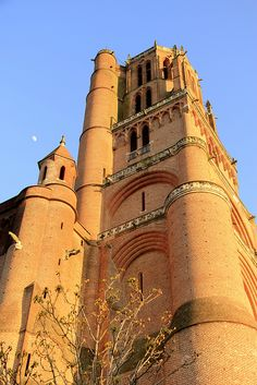 Ste Cécile Cathedral, Albi (by cristgal56, via Flickr)