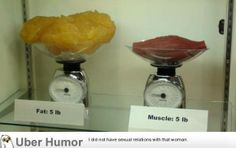 This is what really got to me. 5lbs of fat compared to 5lbs of muscle. | uberHumor.com
