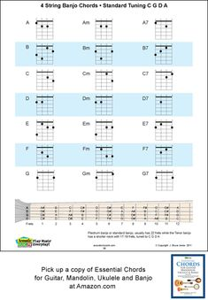 A, B, C, D, E, F, G with their 1, 4, 5, and 7th chord fingerings in first position. This chart make a great reference for any beginning player. The 1, 4, 5 chord relationship is standard in western music for rock, folk, country, and blues. Available in Essential Chords at Amazon.com $14.95