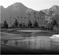 Luxury Scottsdale Golf Real Estate