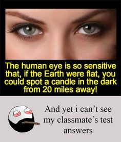Ideas Funny Quotes For Kids Hilarious Truths For 2019 Funny School Jokes, Crazy Funny Memes, School Memes, Wtf Funny, Funny Facts, Funny Jokes, Hilarious, Be Like Bro Memes, Wierd Facts