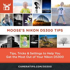 Moose's Nikon D5300 Tips, Tricks & Best Settings