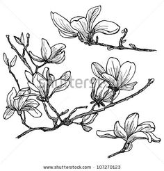flower stock, vector - Google Search