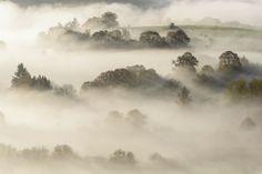 Valley of the Semois - Dohan, Belgium  #ardennes #mist #belgium