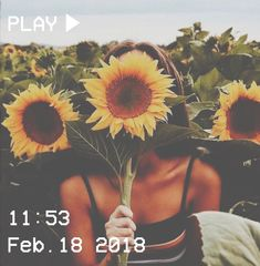 M O O N V E I N S 1 0 1 #vhs #aesthetic #girl #sunflowers #tan #summer #sky #field #flowers