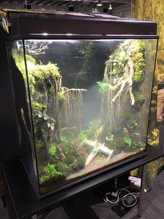 A Dagobah System themed terrarium. Haha i should do this for my tortoise!!