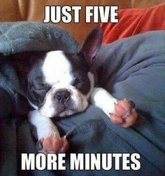 Just five more minutes....