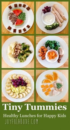 Tiny Tummies – Lunches for Toddlers! http://www.joyfulabode.com/healthy-toddler-lunches/