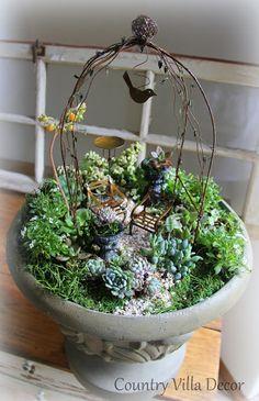 COUNTRY VILLA LIFESTYLE & DECOR : Succulent Mini-Gardens