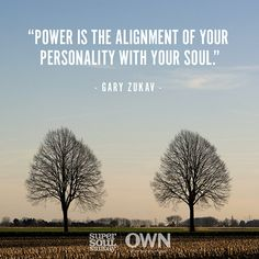 Power is the alignment of your personality with your soul. — Gary Zukav