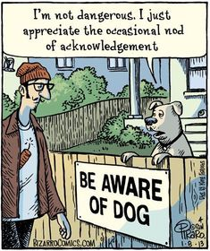 Bizarro Comic (by Dan Piraro) - Be Aware of Dog Bizarro Comic, Funny Shit, The Funny, Funny Stuff, Hilarious, Random Stuff, Funny Cartoons, Funny Comics, Funny Memes
